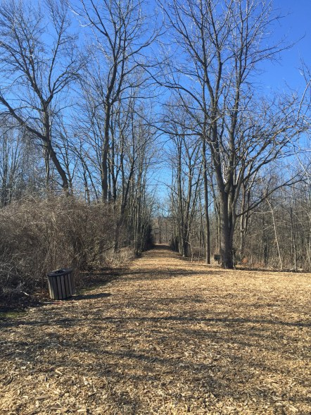Natural Pathways at Paletta Lakefront Park